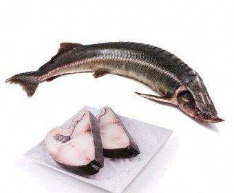 Свежемороженая рыба в Москве